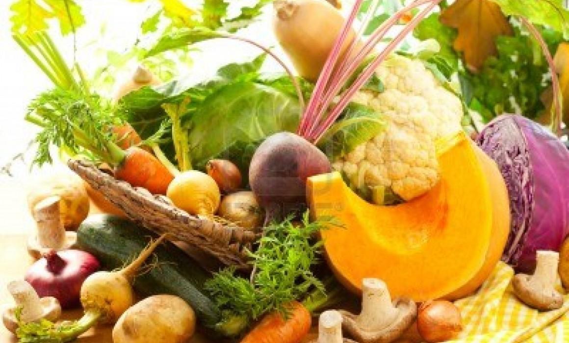 10066018-nature-morte-avec-legumes-d-39-automne